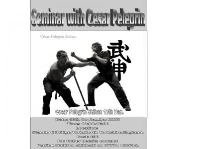 César Pelegrín UK Seminar / Curso en Inglaterra