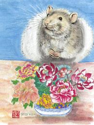 2008. Año de la Rata